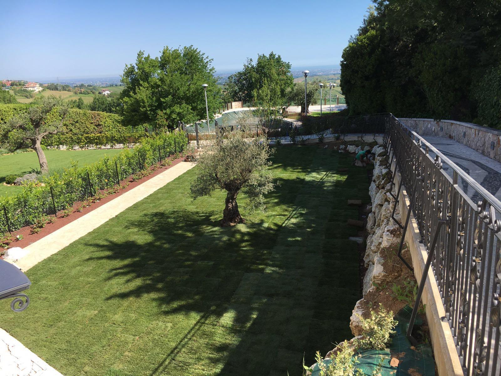 Creazione giardino rimini spazio verde riccione for Giardino rimini