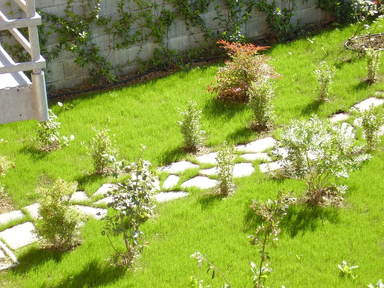 Camminamenti spazio verde riccione - Camminamento pietra giardino ...