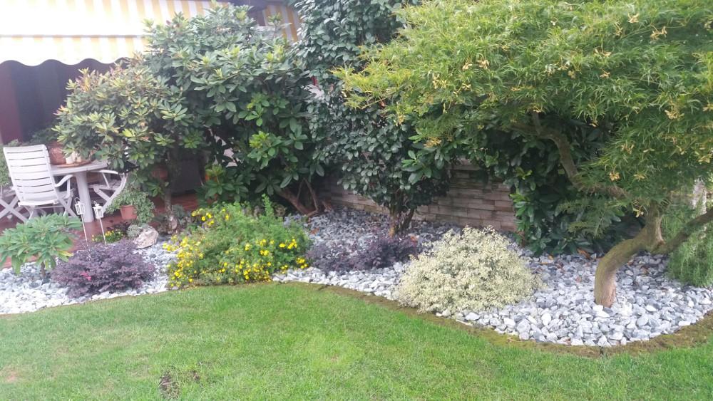 Arredo di giardini spazio verde riccione for Alberelli per giardino